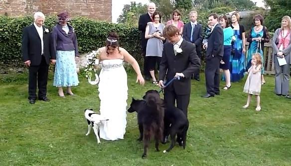 Itt vannak a legmeghökkentőbb esküvői fotók!